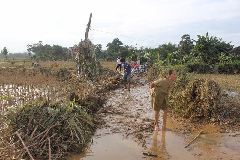 Quảng Ngãi: Phân bổ 1.000 tấn gạo cứu đói cho dân - ảnh 1