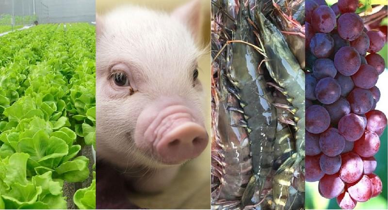 Cây trồng, vật nuôi được Nhà nước hỗ trợ bảo hiểm - ảnh 1