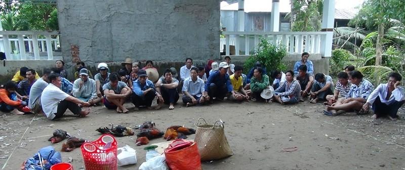 41 người bị bắt giữ tại trường gà ở Rạch Giá - ảnh 1