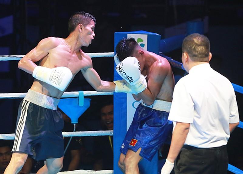 HBF 01 chắp cánh ước mơ boxing Việt Nam  - ảnh 7