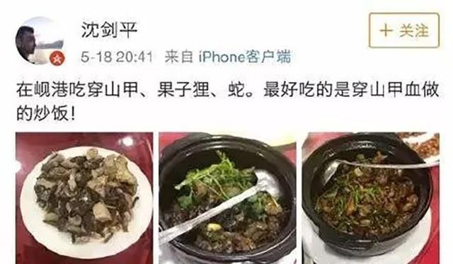 Ăn thịt cầy hương ở VN, sếp công ty Trung Quốc bị sa thải   - ảnh 1