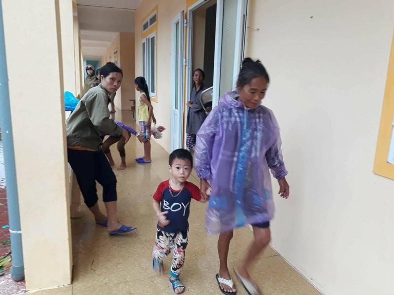 Thị xã Cửa Lò tan hoang sau bão số 10 - ảnh 9