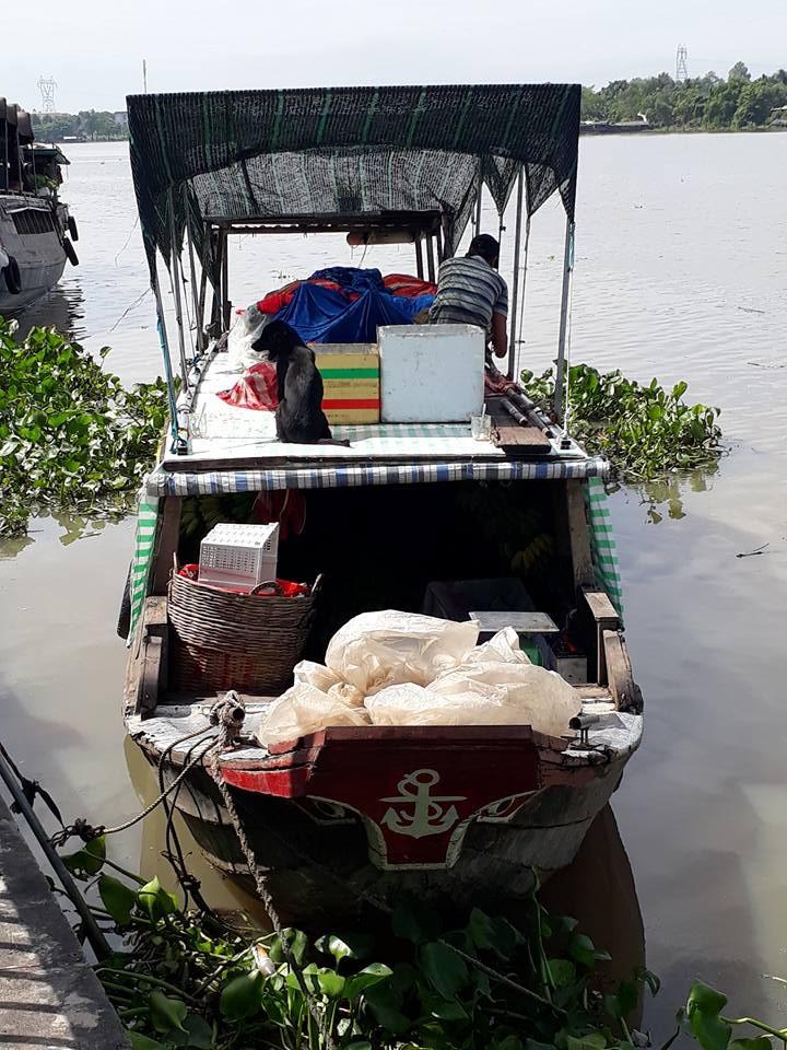 TP.HCM khai trương 7 tour du lịch đường sông mới - ảnh 4