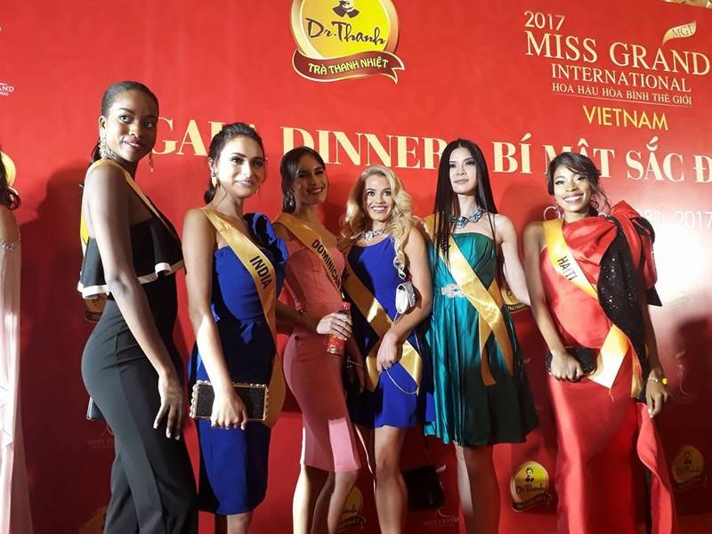 Mãn nhãn với 80 hoa hậu thế giới khoe sắc tại TP.HCM - ảnh 6