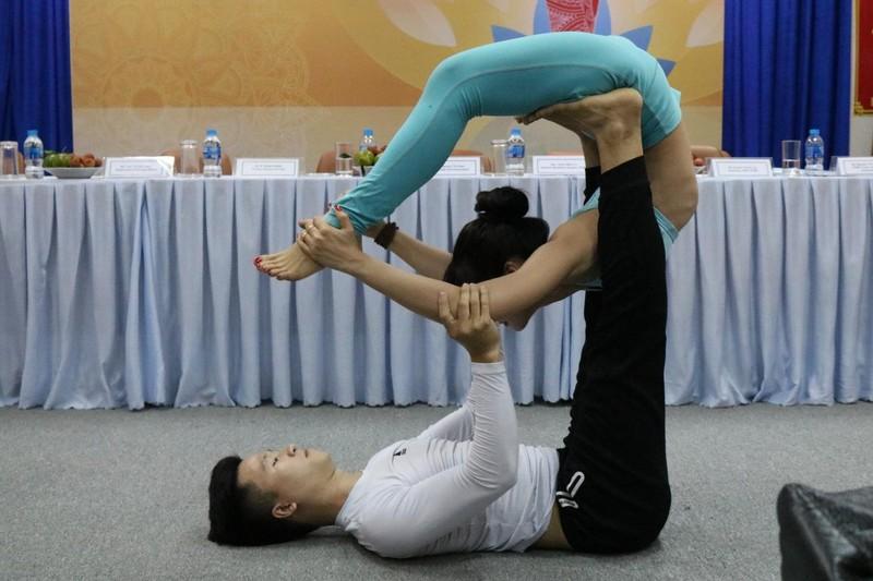 Hơn 500 người tham gia Ngày Quốc tế Yoga lần thứ 4 - ảnh 1