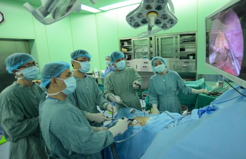 Ca phẫu thuật nội soi đầu tiên của Việt Nam là trên... chó - ảnh 1