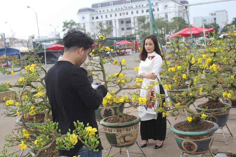 Cây mai 100 tuổi, giá 2 tỉ đồng ở Đà Nẵng - ảnh 9