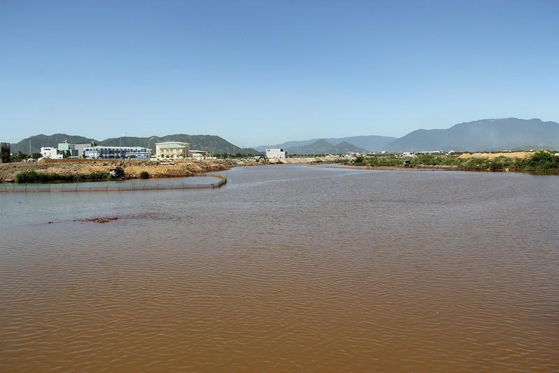 Nước sông chuyển đỏ, cá chết khiến dân hoang mang - ảnh 1