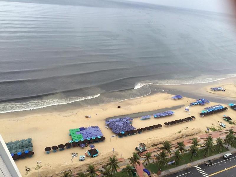 Nước thải đen ngòm cuồn cuộn chảy ra biển Đà Nẵng - ảnh 1
