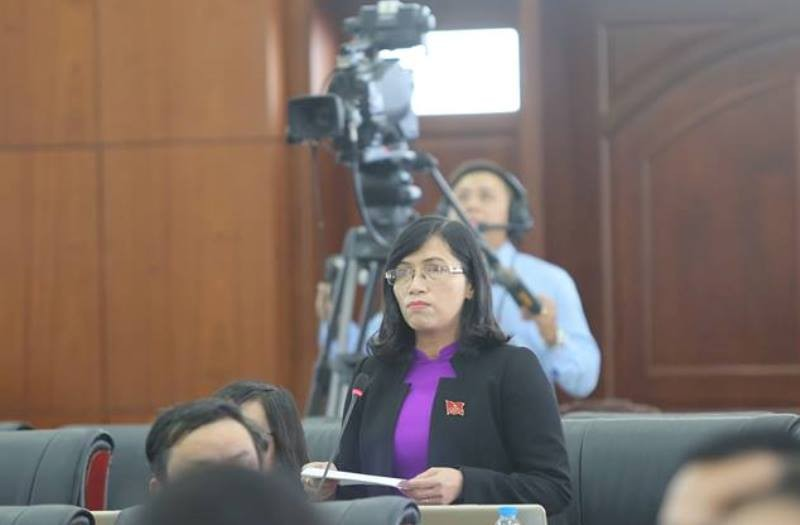 Những nữ đại biểu làm nóng nghị trường Đà Nẵng - ảnh 1