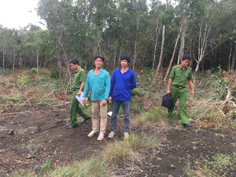 Hàng chục vụ phá rừng và lấn chiếm đất trái luật tại Phú Quốc - ảnh 1