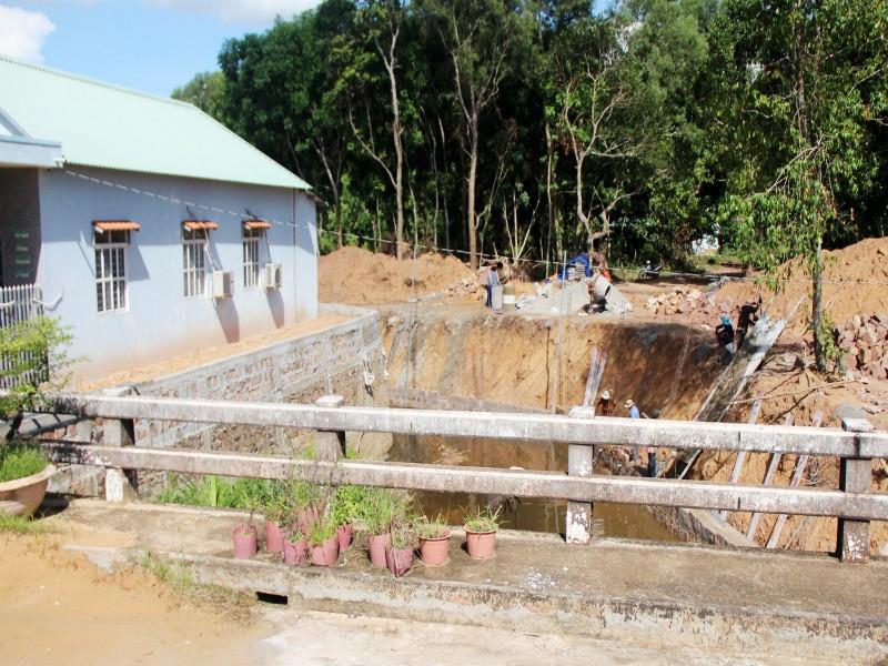Hàng chục vụ phá rừng và lấn chiếm đất trái luật tại Phú Quốc - ảnh 2
