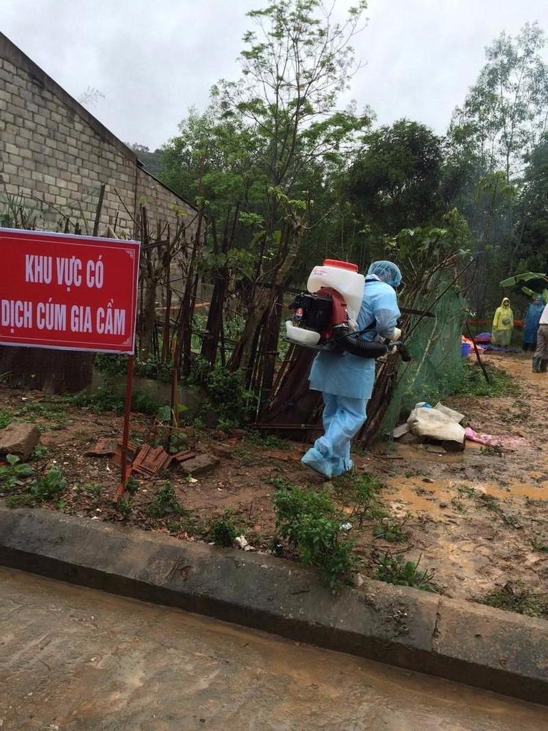 Diễn tập phòng chống cúm gia cầm tại Lạng Sơn