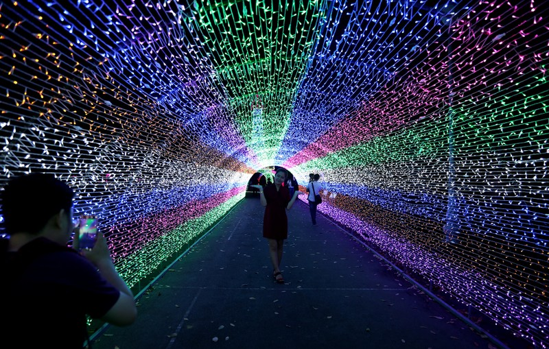 Giới trẻ đổ xô check in khu vườn đèn LED rực rỡ nhất SG - ảnh 2