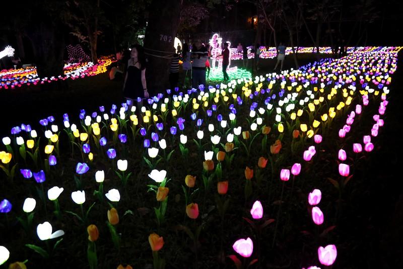 Giới trẻ đổ xô check in khu vườn đèn LED rực rỡ nhất SG - ảnh 6