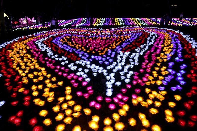 Giới trẻ đổ xô check in khu vườn đèn LED rực rỡ nhất SG - ảnh 7