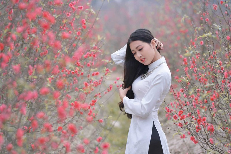 Ngắm nữ sinh 'dành cả thanh xuân chụp ảnh với áo dài' - ảnh 9