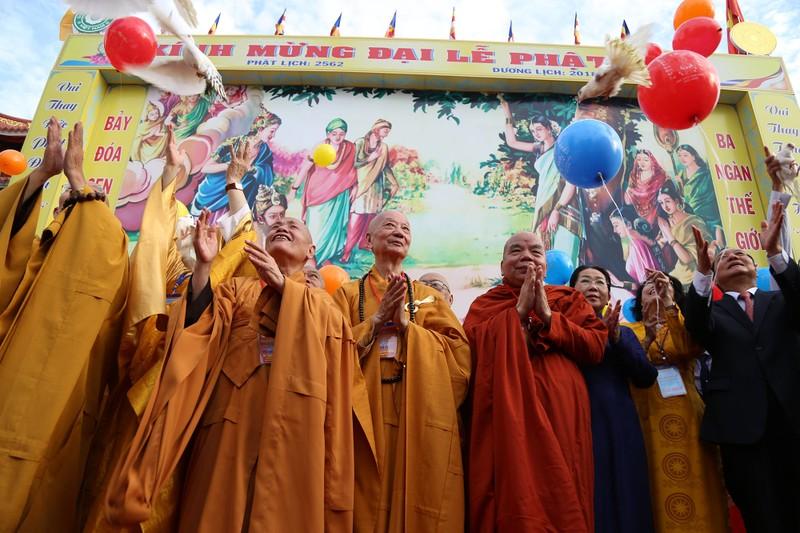 Hàng ngàn người mừng Phật đản tại Việt Nam Quốc Tự - ảnh 8