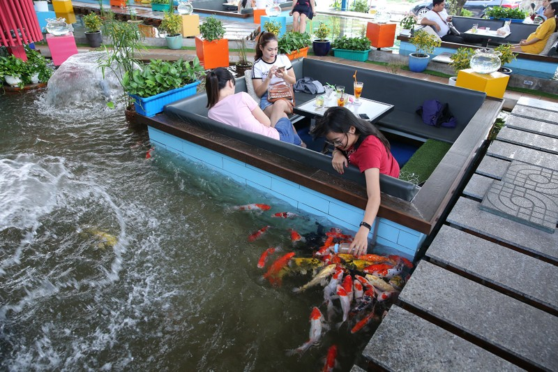 Trải nghiệm uống cà phê giữa hồ cá Koi tiền tỉ ở Sài Gòn - ảnh 2