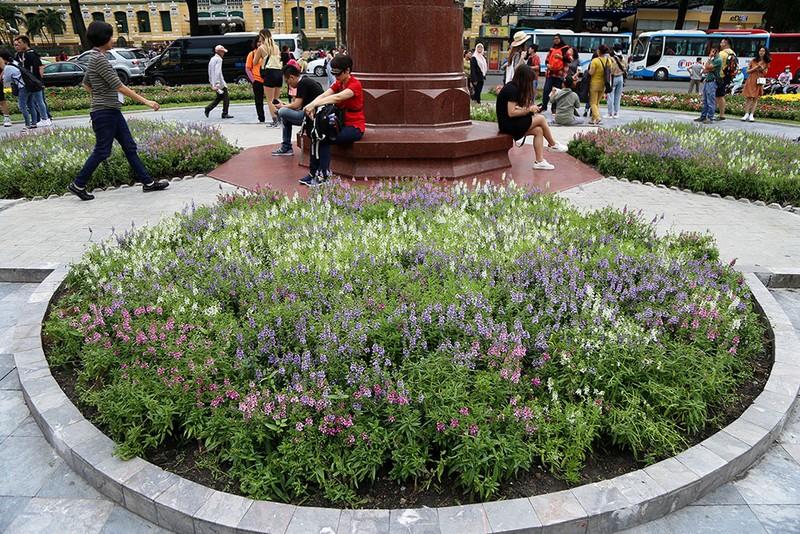 Công viên trước nhà thờ Đức Bà thay áo mới - ảnh 3