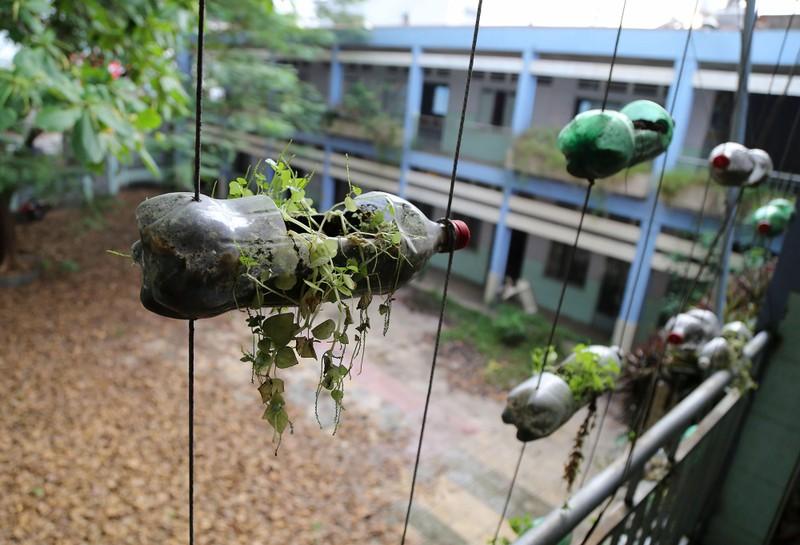 Ngôi trường tiểu học bỏ hoang gần 3 năm ở TP.HCM - ảnh 17