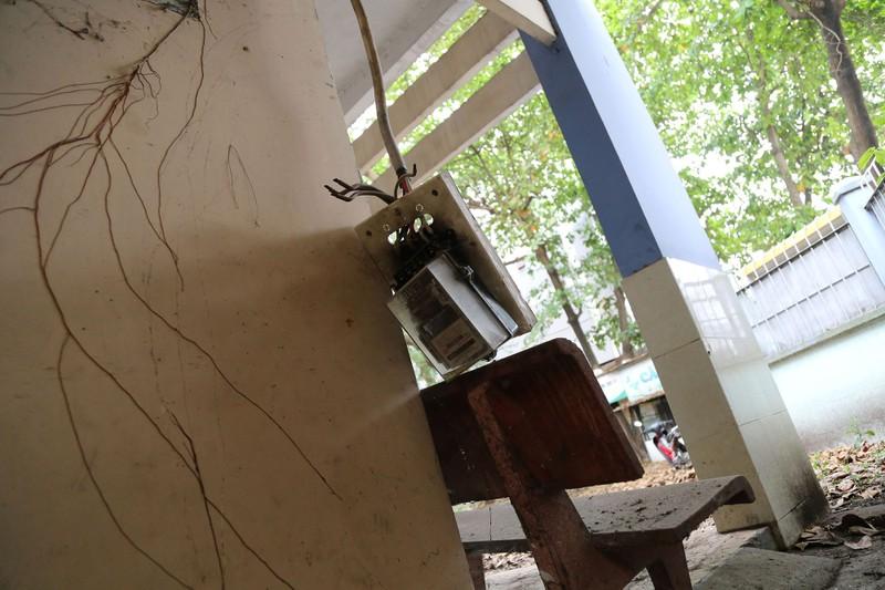 Ngôi trường tiểu học bỏ hoang gần 3 năm ở TP.HCM - ảnh 7