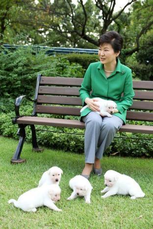 Rời Nhà Xanh bỏ lại chó cưng, bà Park bị kiện - ảnh 2