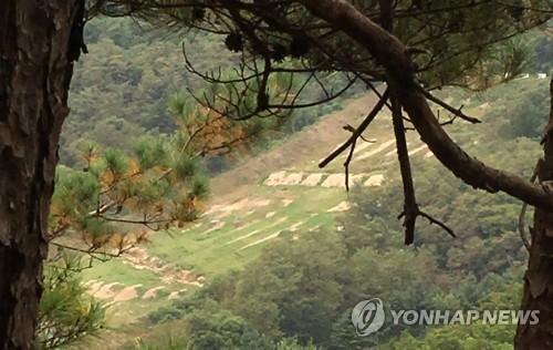 Đạn lạc 400 m, lính Hàn Quốc thiệt mạng gần biên giới - ảnh 1