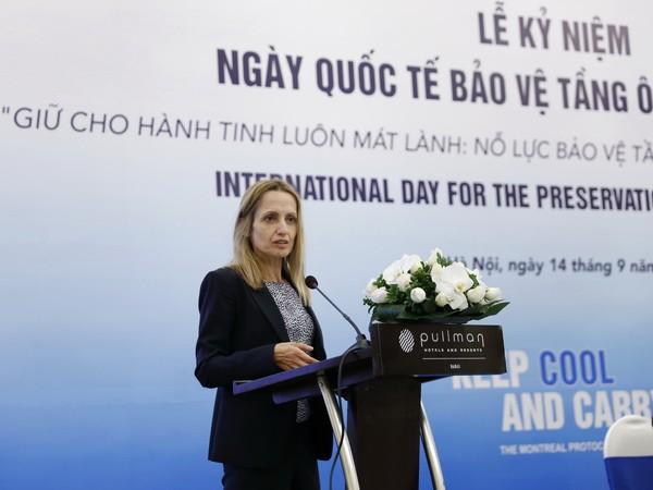Việt Nam nỗ lực bảo vệ tầng ozone và khí hậu - ảnh 3