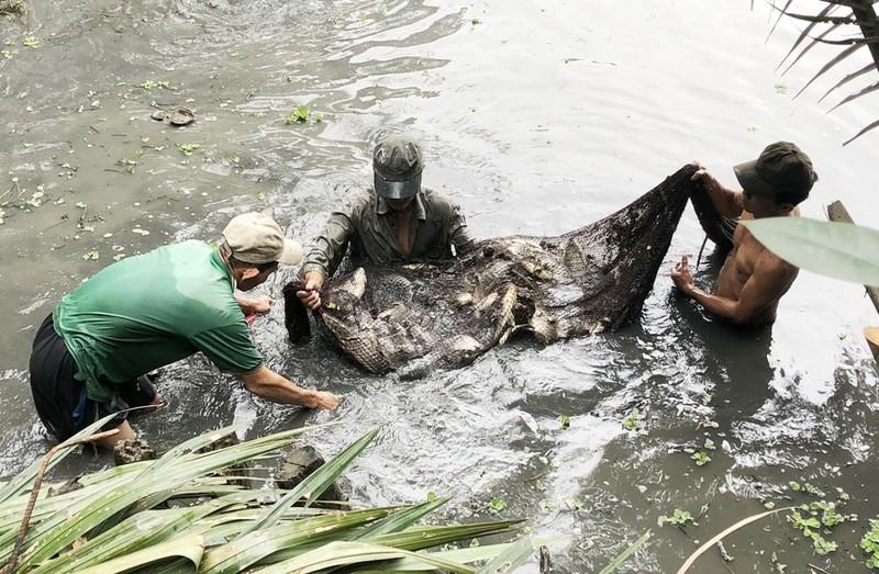 Người dân xã Đa Phước thu hoạch gần 2 tấn cá - ảnh 2