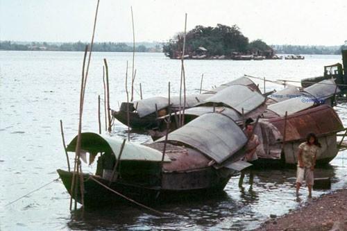 Bí ẩn Cù lao 'biến mất' trên sông Đồng Nai - ảnh 1