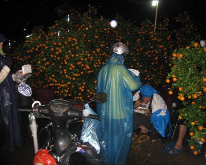 Chủ tịch tỉnh kêu gọi mua hoa giúp nông dân có tết - ảnh 2