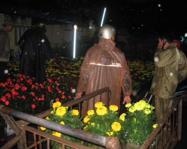 Chủ tịch tỉnh kêu gọi mua hoa giúp nông dân có tết - ảnh 3