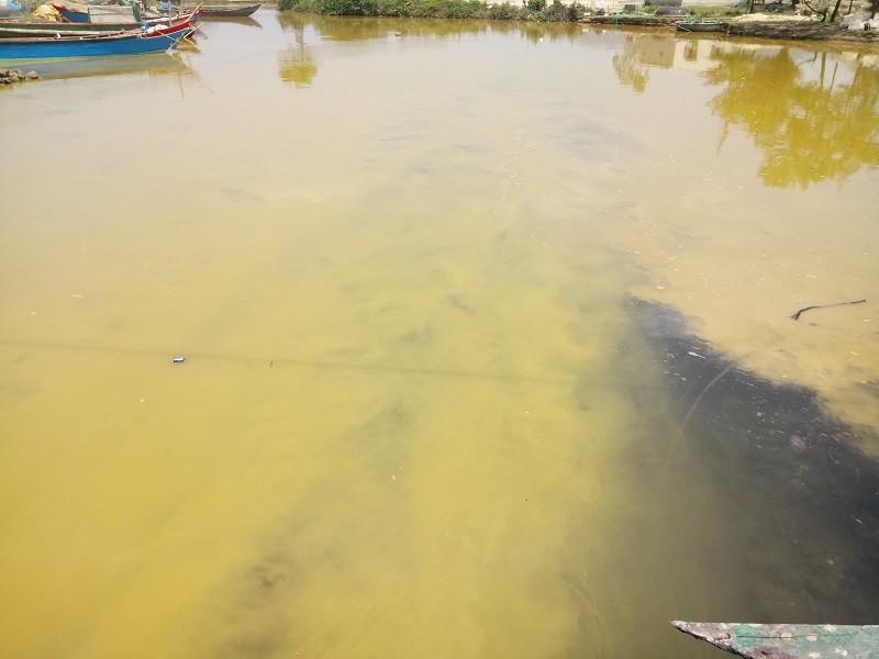 Xuất hiện dải nước màu vàng gây ngứa tại cảng Chân Mây - ảnh 2