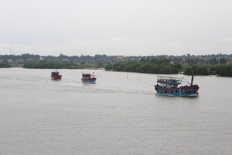Miền Trung: Tàu vào bờ, dân đốn cây đón bão số 10 - ảnh 2