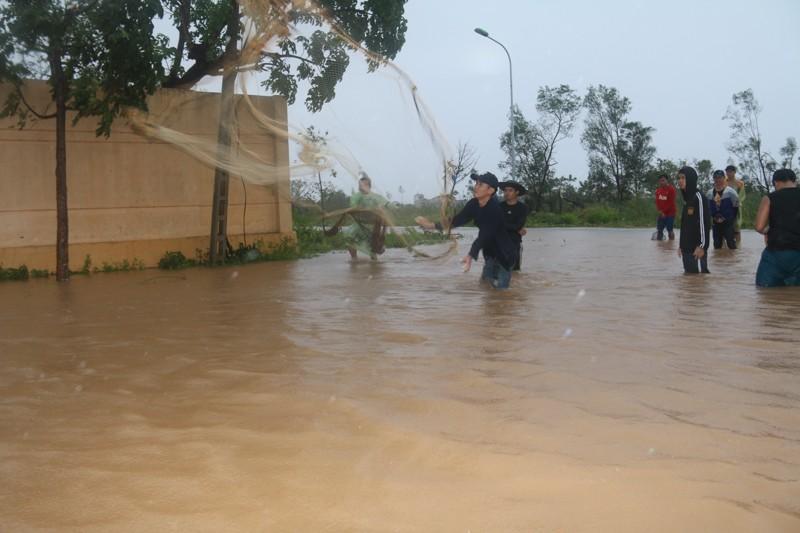 Sau bão số 10, dân Quảng Bình quăng chài giữa phố  - ảnh 2