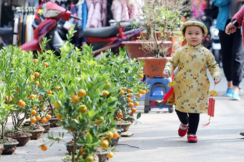 Chợ hoa Hàng Lược nhộn nhịp những ngày giáp Tết - ảnh 13