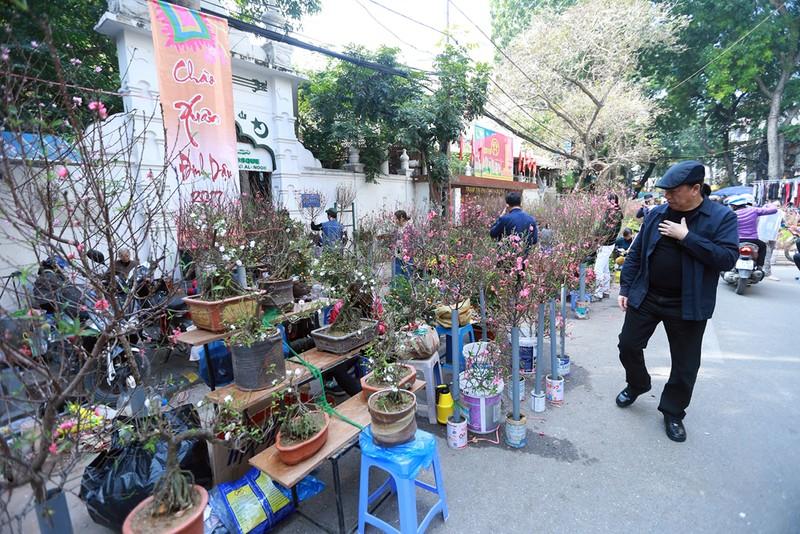 Chợ hoa Hàng Lược nhộn nhịp những ngày giáp Tết - ảnh 2