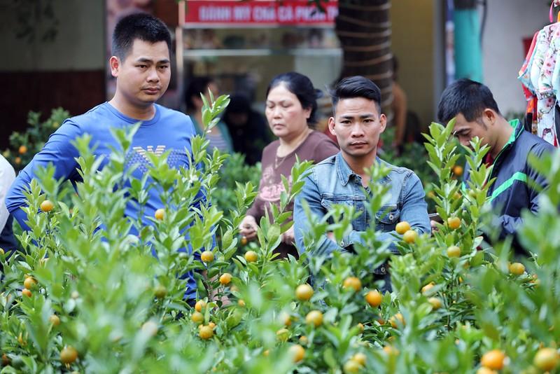 Chợ hoa Hàng Lược nhộn nhịp những ngày giáp Tết - ảnh 6