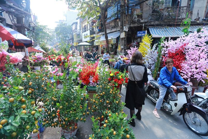 Chợ hoa Hàng Lược nhộn nhịp những ngày giáp Tết - ảnh 1
