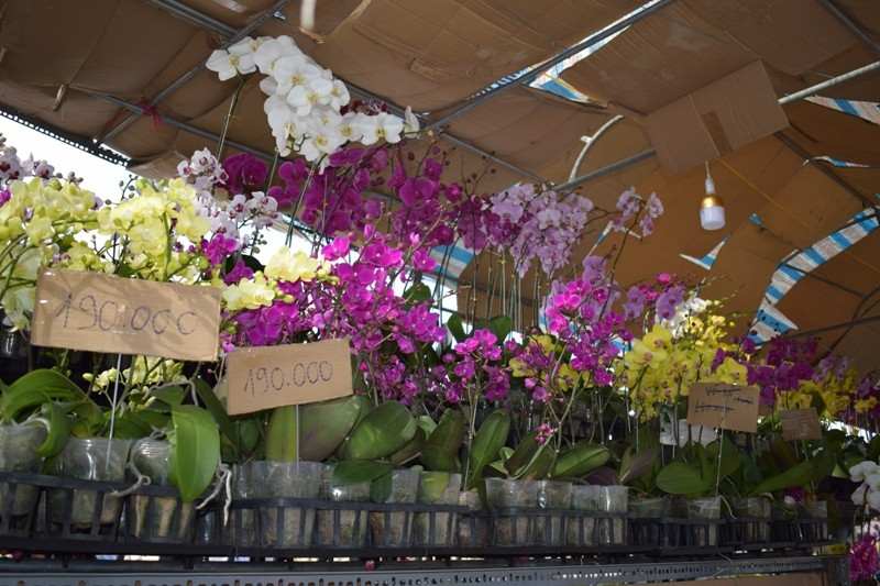 Bến Bình Đông: Hoa tươi, người héo - ảnh 13