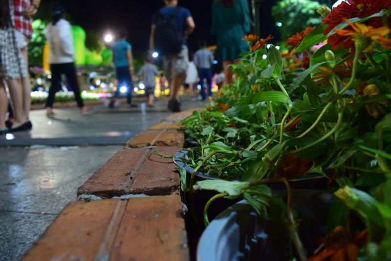 Đường hoa Nguyễn Huệ sau đêm mùng 3 Tết - ảnh 6
