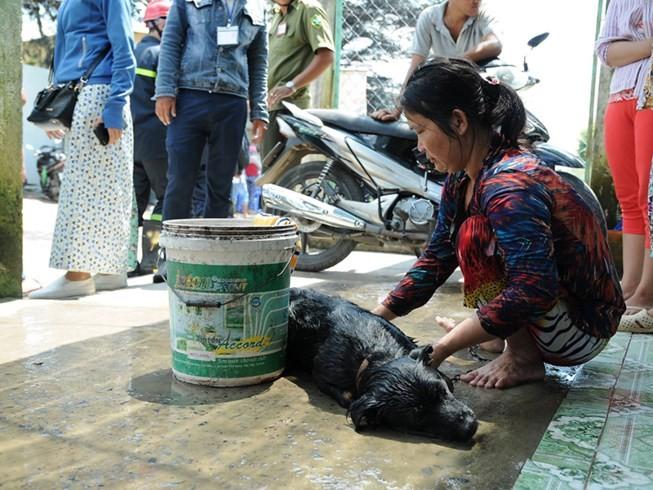 Vụ rò rỉ khí amoniac ở Bình Chánh: Dân chưa dám về nhà - ảnh 2