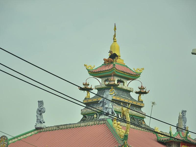 Nghi 'ngáo đá', thanh niên lên nóc chùa ở quận 8 cố thủ - ảnh 2