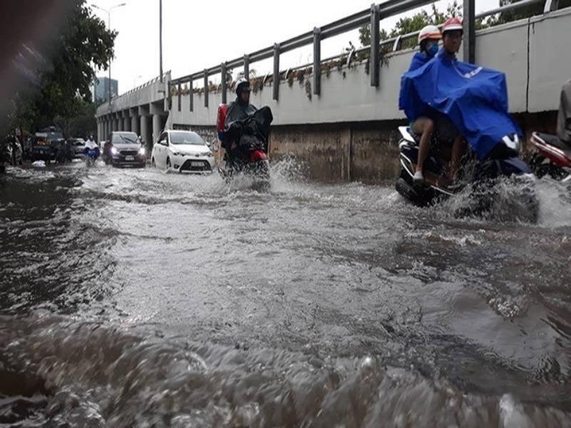 TP.HCM triển khai ứng phó mưa lũ, triều cường  - ảnh 1