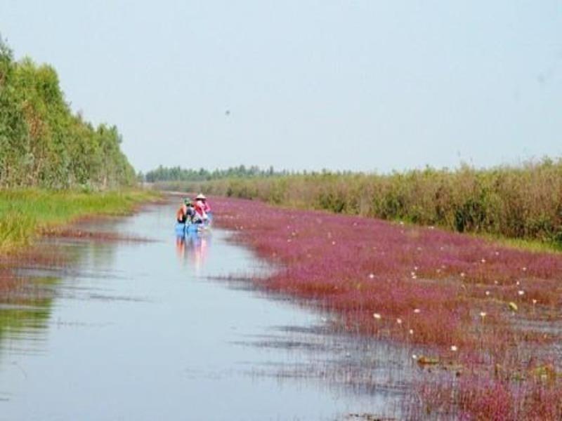 Khu Ramsar 2.000 của thế giới: Về với thiên nhiên! - ảnh 2