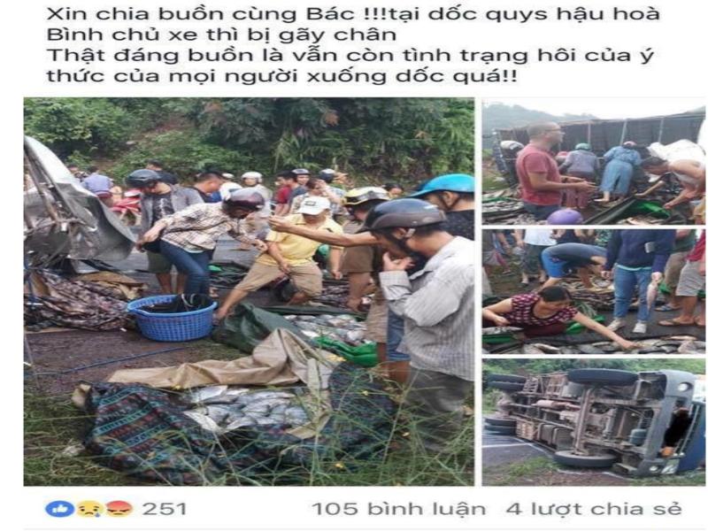 Xe cá bị lật, dân mua lại cá giúp chủ xe bớt thiệt hại - ảnh 1