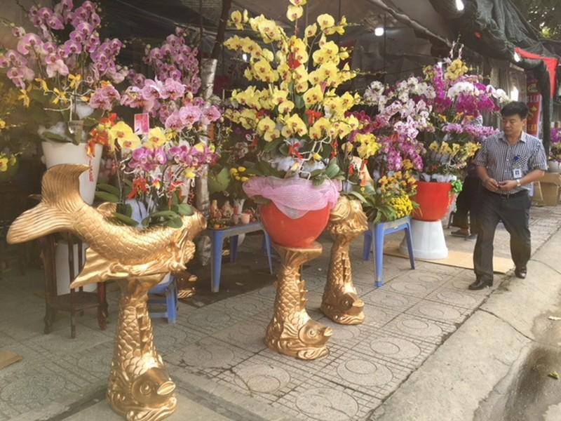 Hốt bạc hoa lan Tết bán