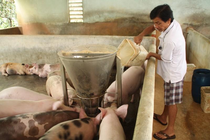 Thịt heo nhập khẩu vào Việt Nam chỉ… 35.000 đồng/kg  - ảnh 1