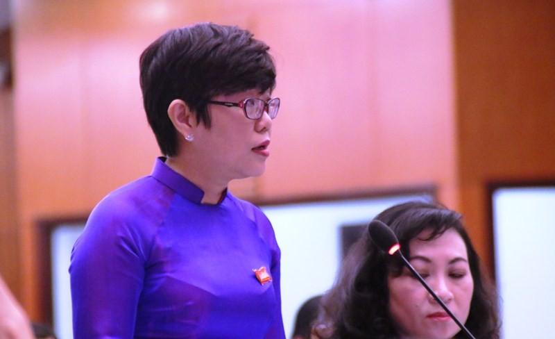 Giám đốc Sở Giáo dục trải lòng về vụ bạo hành Mầm Xanh - ảnh 2